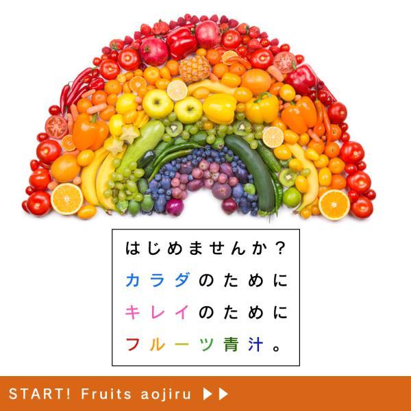 【フルーツ青汁:1か月分】90g(3g×30包)青汁 酵素 ダイエット 健康 フルーツ 118種の酵素  国産 ポイント消化 ワンコイン 送料無料|aemotion|03