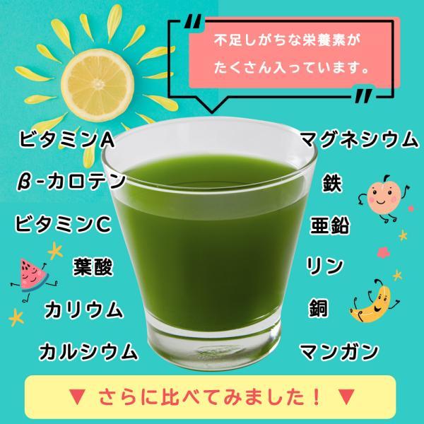 【フルーツ青汁:1か月分】90g(3g×30包)青汁 酵素 ダイエット 健康 フルーツ 118種の酵素  ケール 国産 ポイント消化 ワンコイン 送料無料|aemotion|06