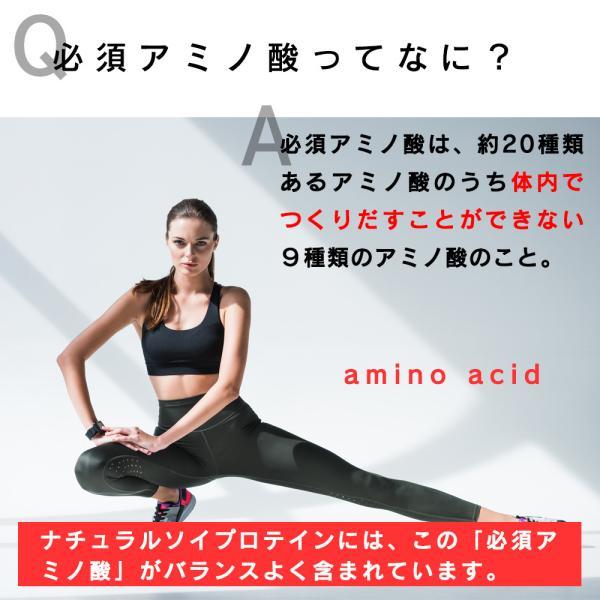 ( ナチュラルソイプロテイン 1kg ) 無添加 保存料不使用 大豆 ダイエット 美容 筋肉 スポーツ 大容量 アミノ酸 プロテイン 送料無料 ギフト aemotion 07