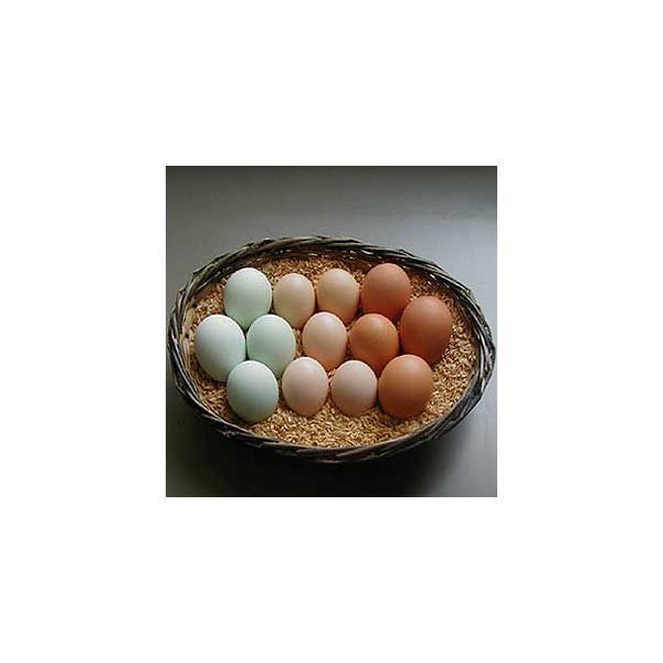 三種鶏卵「たべくらべ」10個入¥1940円 :昔懐かし野外放し飼い高級卵の味比べ!