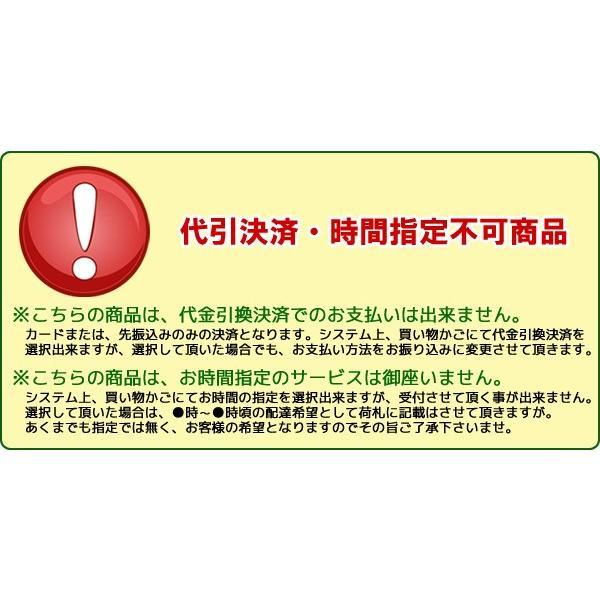 座布団 おしゃれ 丸 円 四角 長方形 Amaretto リビング 布 ファブリック 送料無料 新生活 CN-50R CN-60R|age|07