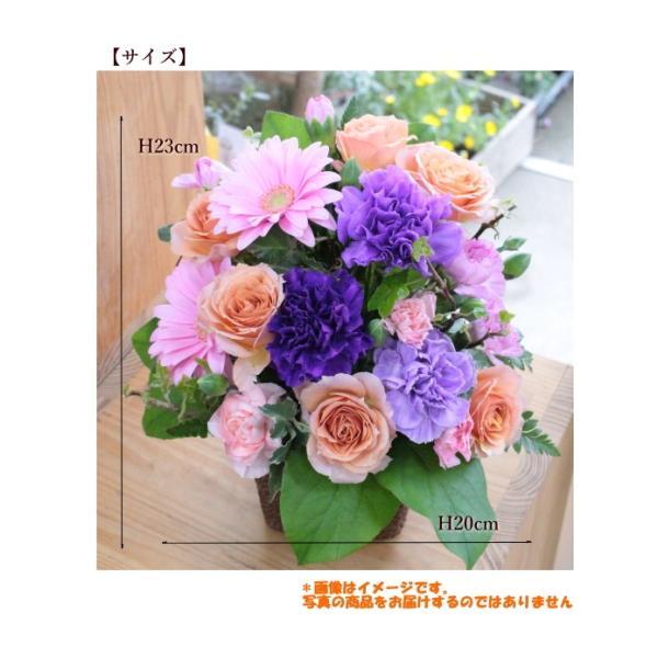敬老の日 フラワーアレンジ 紫カーネーション プレゼント  誕生日 お祝い お礼  送料無料 クール便「お花おまかせムーンダストアレンジ」|agreable1999|06