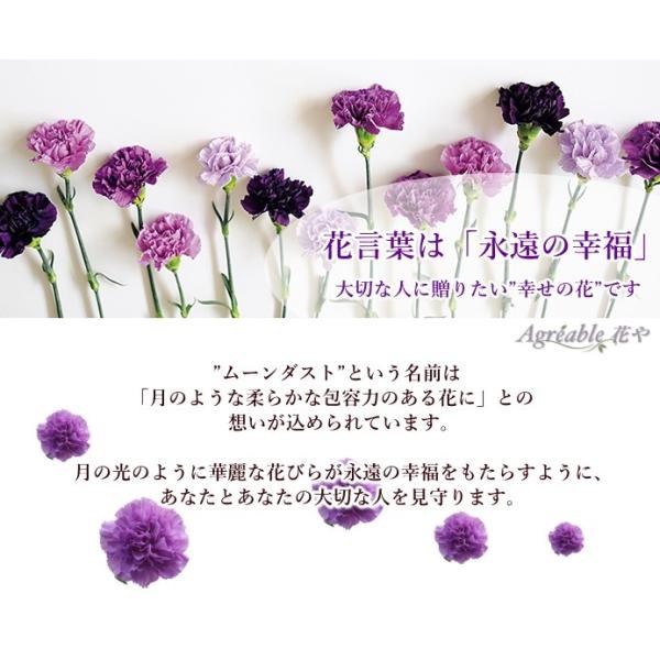 敬老の日 フラワーアレンジ 紫カーネーション プレゼント  誕生日 お祝い お礼  送料無料 クール便「お花おまかせムーンダストアレンジ」|agreable1999|07