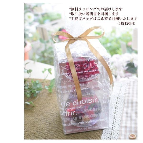 ハーバリウムとプリザーブドのアレンジ 花 送別祝い ギフト  送料無料 あすつく 誕生日 プレゼント 植物標本 インテリア 「ハーバルーチェ」 agreable1999 10