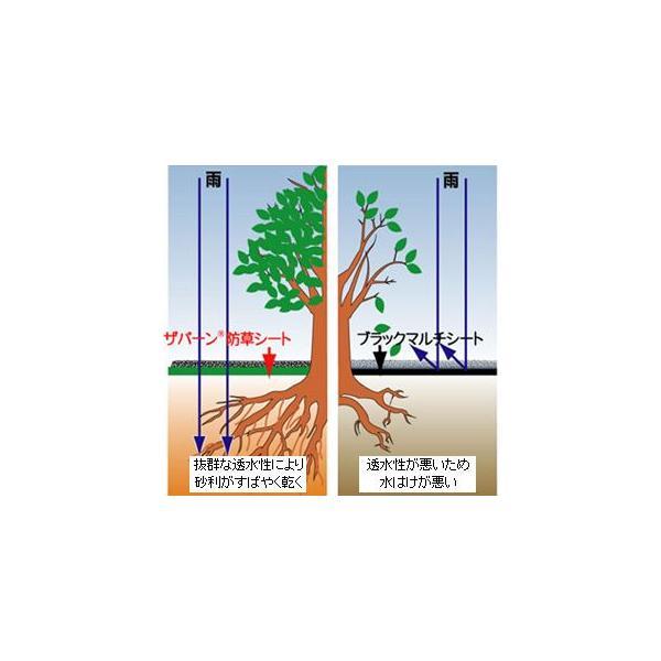 デュポン 超強力 防草シート ザバーン 240G グリーン 1×30m 1本入 農業資材 園芸用品 家庭菜園|agriz|04