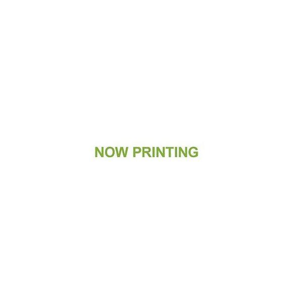 噴霧器 充電式 噴霧器 工進 バッテリー式噴霧機 SLS-15H