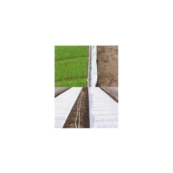 「個人宅配送不可・会社名や農園名へのお届け限定」 ユニチカ 水稲育苗用 不織布 ラブシート 150cm×50m 20307WTD 農業資材|agriz|02