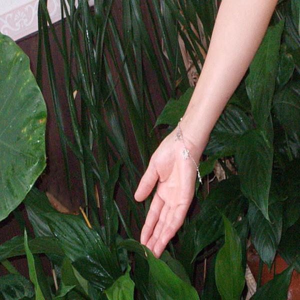 シルバー925 デザイン ブレスレット 四葉のクローバーと蝶々モチーフ|ai-fujinomiya|06