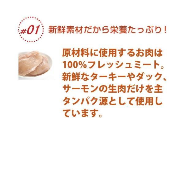 ナウフレッシュ アダルト 5.44kg 送料無料|aicarrot|05