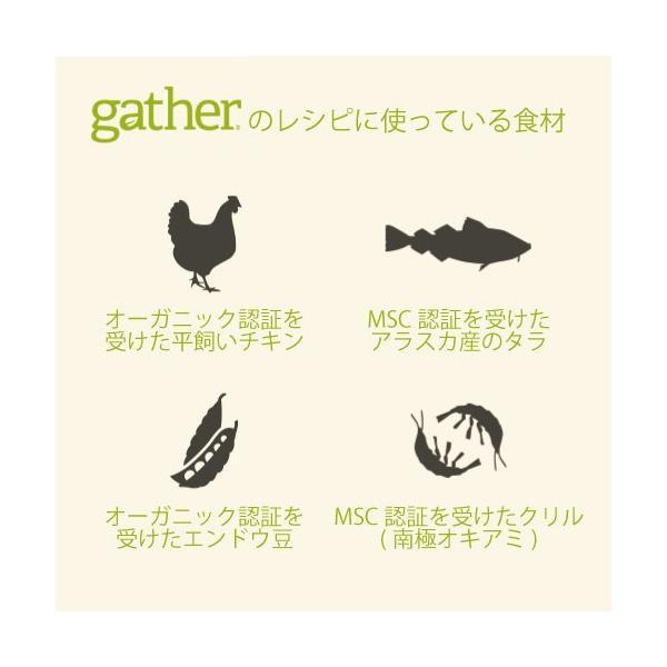 ギャザー エンドレスバレー 2.72kg|aicarrot|03