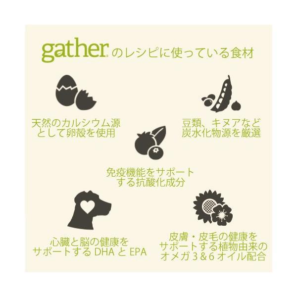 ギャザー エンドレスバレー 2.72kg|aicarrot|04