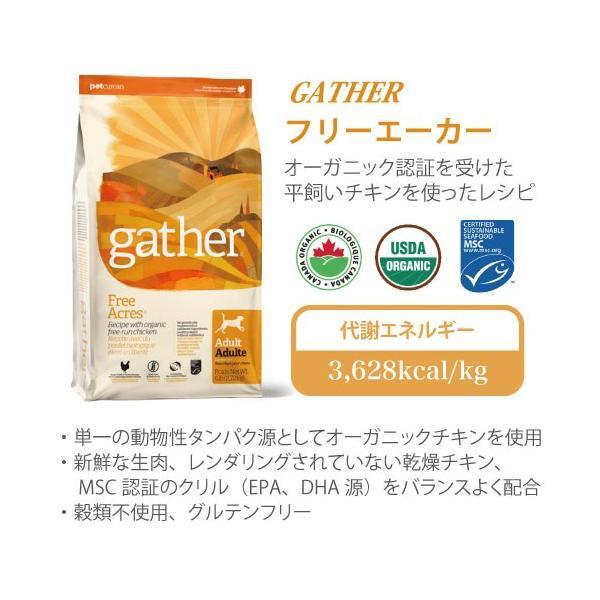 ギャザー エンドレスバレー 2.72kg|aicarrot|06