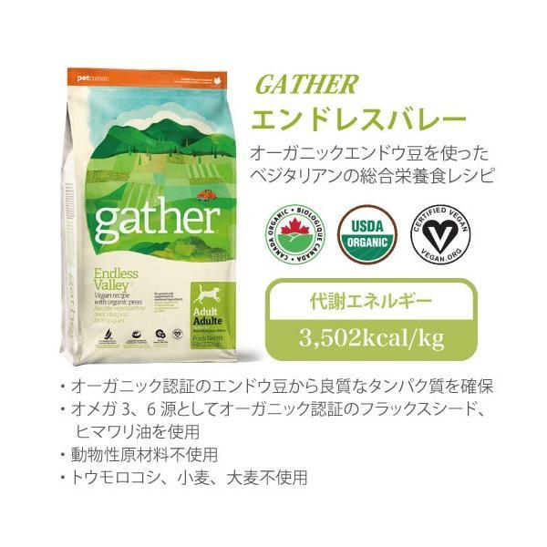 ギャザー エンドレスバレー 2.72kg|aicarrot|08