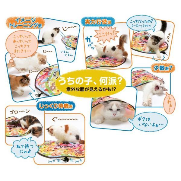 キャッチミーイフユーキャン2 猫 おもちゃ ディーカルチャー SPORT PET|aicarrot|03