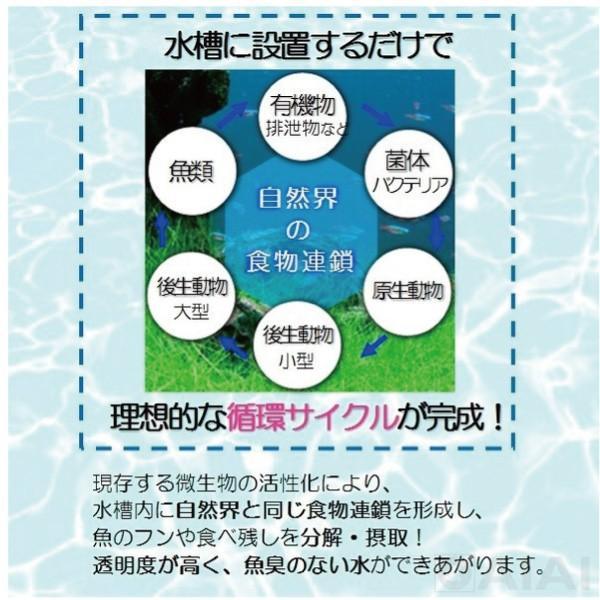 水質浄化活性石 水槽用バクチャー(淡水用)60L用 水質調整剤 水槽の水換え不要1年間|aicarrot|04