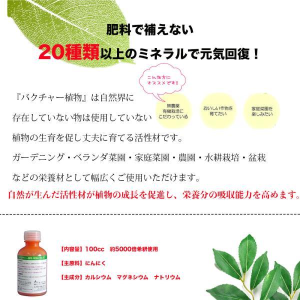 バクチャー植物 100cc (5リットルジョウロに1cc使用で約100回分)液体肥料・植物活性剤・栄養剤・土壌改良剤|aicarrot|03