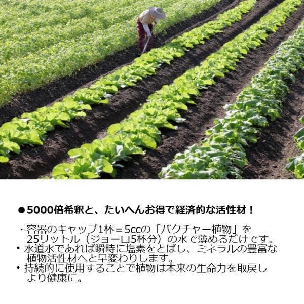 バクチャー植物 100cc (5リットルジョウロに1cc使用で約100回分)液体肥料・植物活性剤・栄養剤・土壌改良剤|aicarrot|05