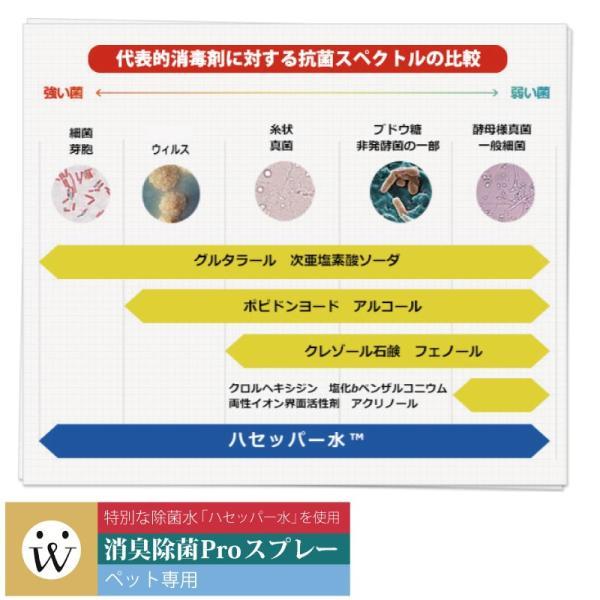 消臭スプレー ペット 安全 人 犬猫 抗菌ウイルス 消臭除菌PROスプレー 本体【精製日は発送日と同日となっております】|aicarrot|06