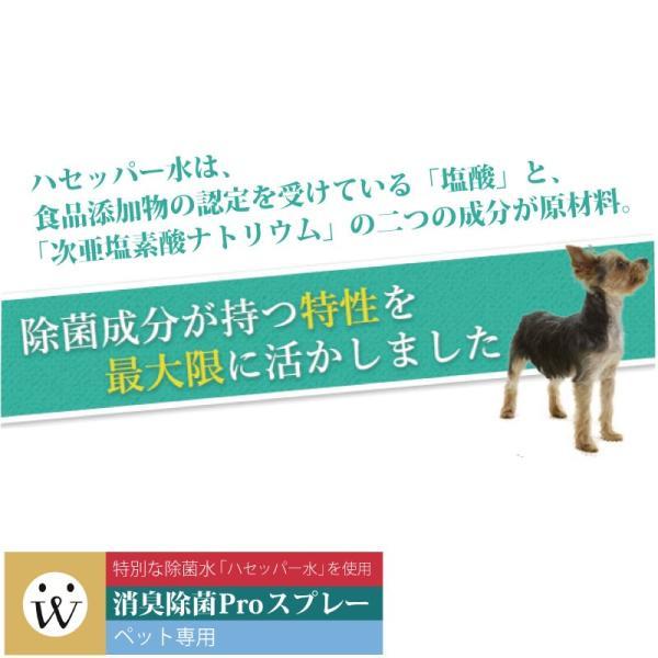 消臭スプレー ペット 安全 人 犬猫 抗菌ウイルス 消臭除菌PROスプレー 本体【精製日は発送日と同日となっております】|aicarrot|07