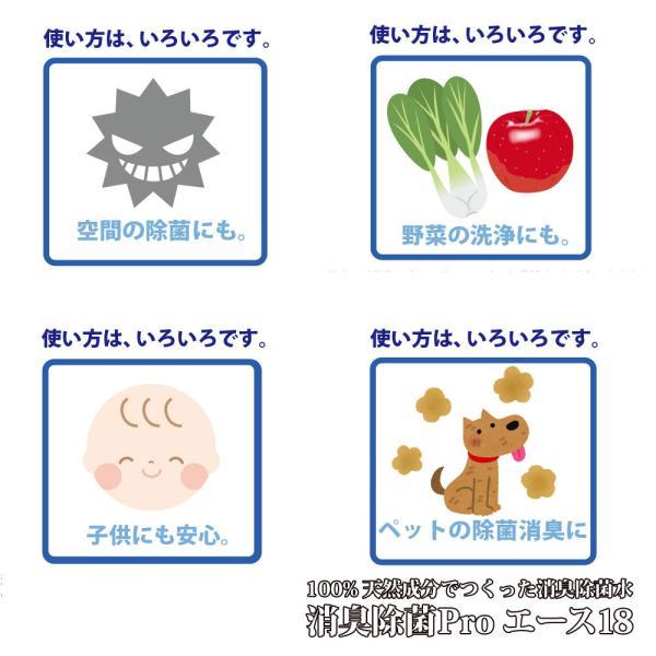 除菌スプレー ウイルス 赤ちゃん 安心 ペット 消臭 ホタテ 野菜洗浄 消臭除菌PROエース18  本体付替セット|aicarrot|09