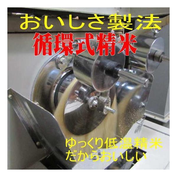 新米 ミルキークイーン10kg 平成30年 会津産 送料無料|aidu-kanehati-kome|03