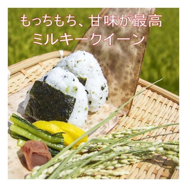 ミルキークイーン 5kg(キロ) 白米 平成30年 会津産 送料無料地域あり aidu-kanehati-kome 04
