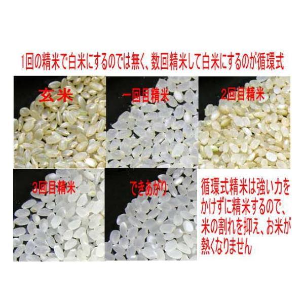 ササニシキ 10kg 平成30年 会津産 送料無料  (小分け 5kgx2)|aidu-kanehati-kome|03