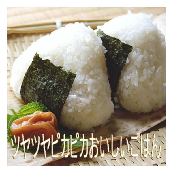 ササニシキ 10kg 平成30年 会津産 送料無料  (小分け 5kgx2)|aidu-kanehati-kome|04