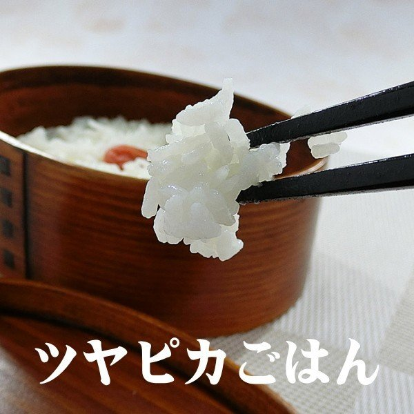 コシヒカリ 玄米25kg 送料無料 平成29年会津産小分け玄米10kgx2 5kgx1   (白米22.5kg )|aidu-kanehati-kome|06