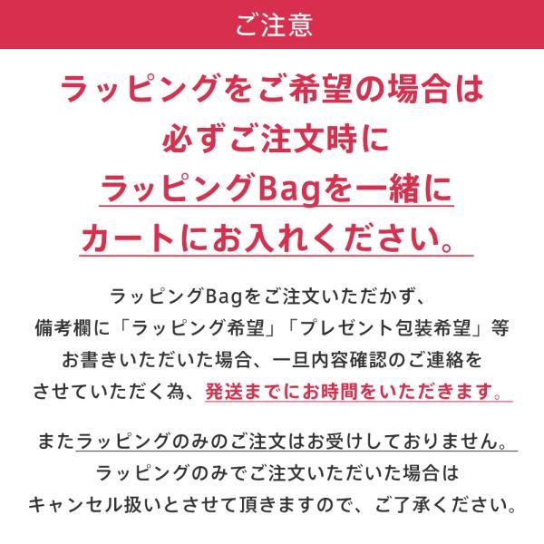 プレゼント ギフト ラッピング 袋 ショッパー ラッピング用品 ショッピングバッグ リボン 紙袋 ラッピング袋 女性 誕生日 贈り物 包装 エメフィール の父の日|aimerfeel|02