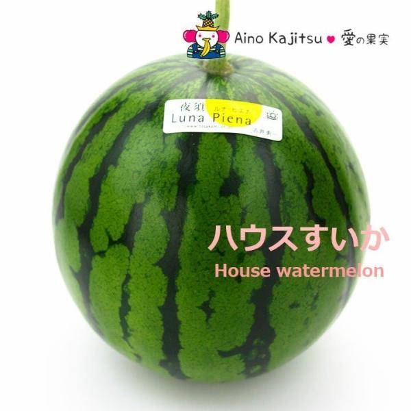 スイカ 西瓜 フルーツ くだもの 果物 七五三【夜須の ハウス すいか(西瓜)(ルナ・ピエナ)小玉 (高知産)】 aino-kajitu