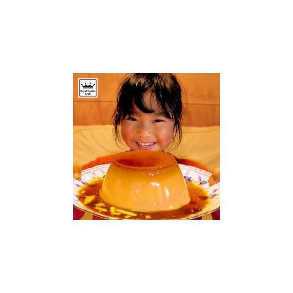 バケツプリン 約1リットル | スイーツ 贈り物 二次会 記念日 パーティー デザート 子供  誕生日 バースデー プレゼント