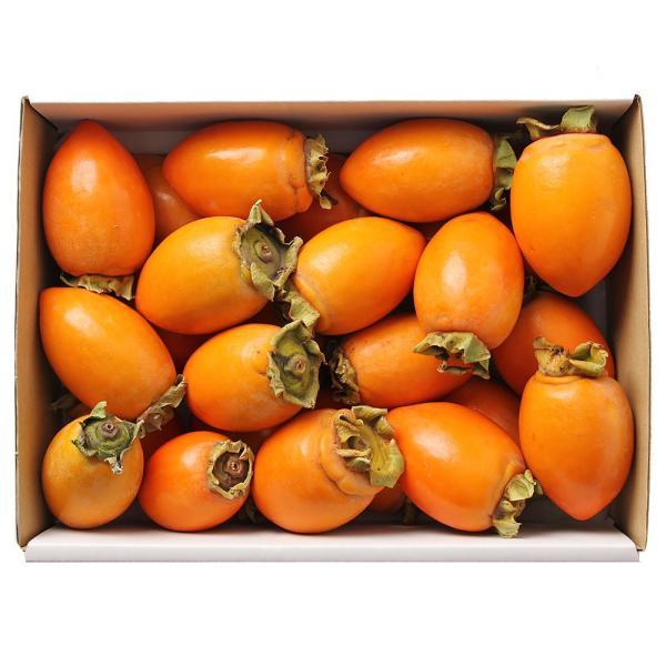 筆柿 ふで柿 甘柿 愛知県産 約2.5kg L〜2Lサイズ 詰め合わせ 箱入り 送料無料