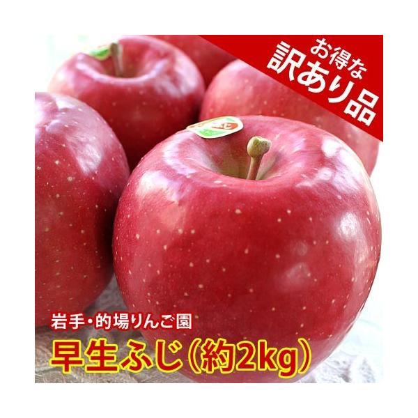 訳あり りんご 詰め合わせ 早生ふじ 約2kg 5〜6玉入り 岩手県産 生産者限定 フルーツ ギフト くだもの 果物 林檎 わけあり 訳あり品 ふじ ふじりんご