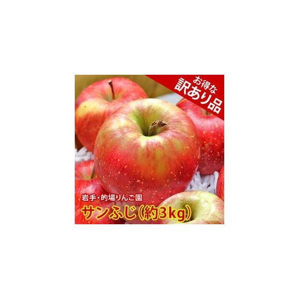 訳あり りんご 詰め合わせ サンふじ 約3kg 8〜9玉入り 岩手県産 生産者限定 フルーツ ギフト くだもの 果物 林檎 わけあり 訳あり品