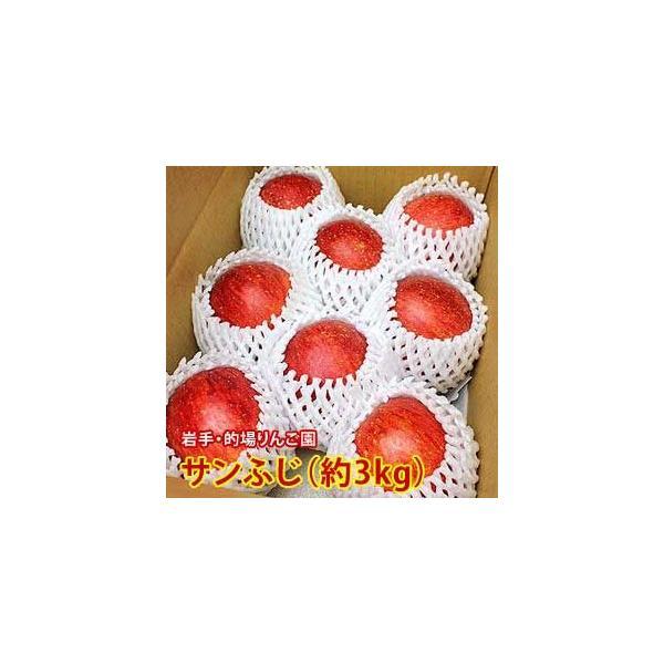 りんご 詰め合わせ サンふじ 約3kg 8〜9玉入り 岩手県産 生産者限定 フルーツ ギフト くだもの 果物 林檎