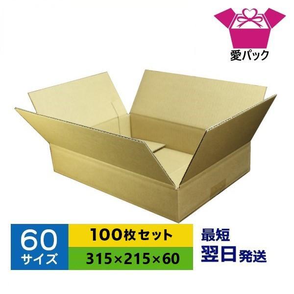 ダンボール箱 60サイズ A4 100枚 無地 段ボール 梱包用 日本製 薄型 ネットショップ 商品発送用 クロネコヤマト 宅急便 ゆうパック メルカリ