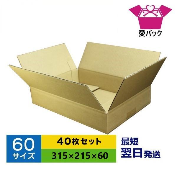ダンボール箱 60サイズ A4 40枚 無地 段ボール 梱包用 日本製 薄型 ネットショップ 商品発送用 クロネコヤマト 宅急便 ゆうパック メルカリ