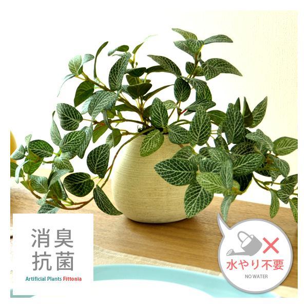 観葉植物 光触媒 フィットニア 卓上 インテリア 人工観葉植物 造花 フェイクグリーン おしゃれ かわいい 人気 お手入れ不要