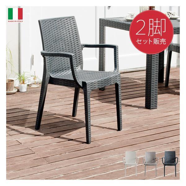 ガーデンチェア 2脚セット ガーデンチェアセット ラタン風 おしゃれ 椅子 イス チェア ガーデンファニチャー バルコニー テラス 庭 屋外 モダン