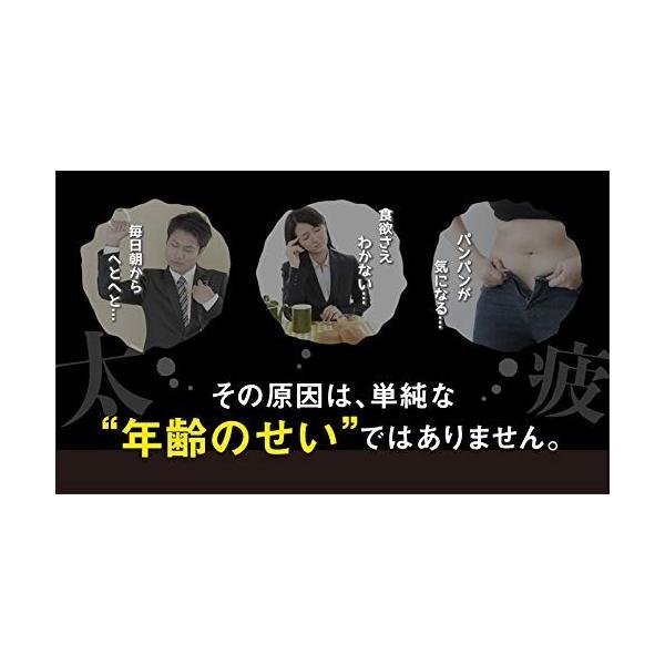 Bella Pelle レバリズム 30日分(90粒入り×2箱)しじみ 肝臓 二日酔い オルニチン|aiz|03