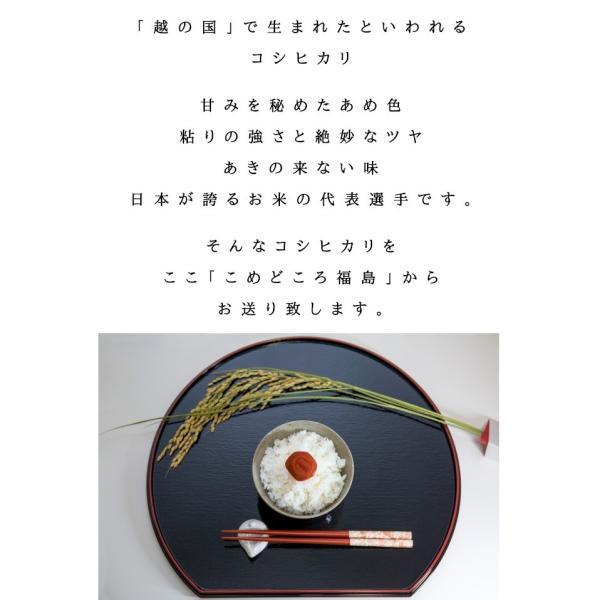 コシヒカリ 10kg(5kg×2) お米 白米 令和元年産 福島県産 あすつく 送料無料|aizu-crops|03
