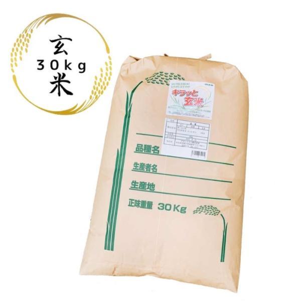 新米 茨城県産コシヒカリ キラッと玄米 30kg 令和3年産 調整済玄米 送料無料 通常発送 9/9より発送