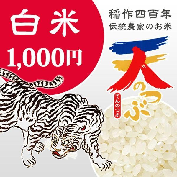 米 お試し米 1.6kg 白米 1年産新米  会津米天のつぶ Aランク一等米使用   国内送料無料 aizukome