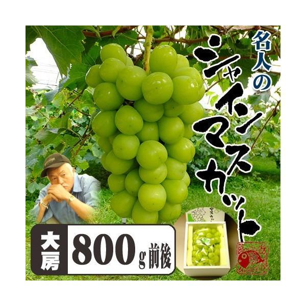 岡山県産 皮ごと食べられて種もない贈答に最適シャインマスカット800g化粧箱