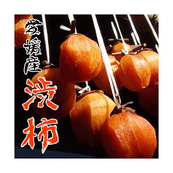 愛媛産渋柿10kg 干し柿用 テレビで紹介されました 送料無料
