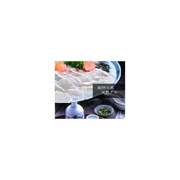 【活魚】本場紀州の最高級天然クエ鍋セット【2〜3人前】【送料無料】