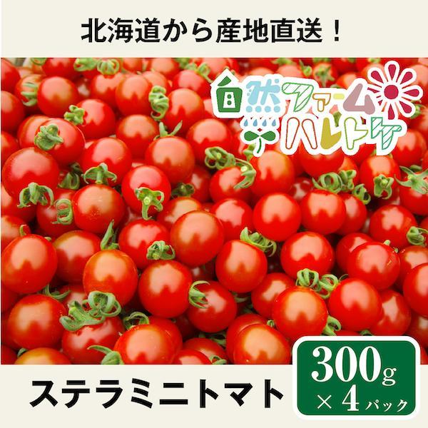 自然栽培のステラミニトマト 300g×4パック (約1.2kg) 自然ファームハレトケ  ハレトケミニトマト 北海道産 固定種 種子消毒なし 自家採種
