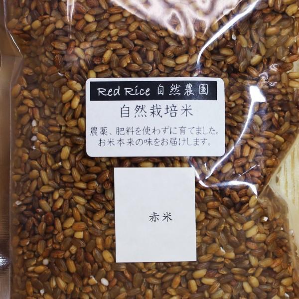 自然栽培 「赤米」RedRice自然農園さん|ak-friend|02