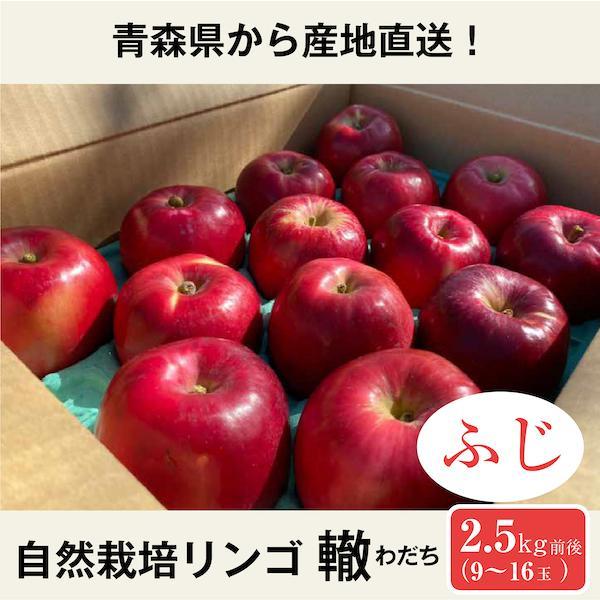 自然栽培リンゴ轍<わだち> 紅玉 2~2.5kg